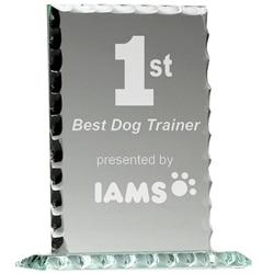"""5"""" Pearl Jade Glass Award 1 Locksmith in Stirling"""