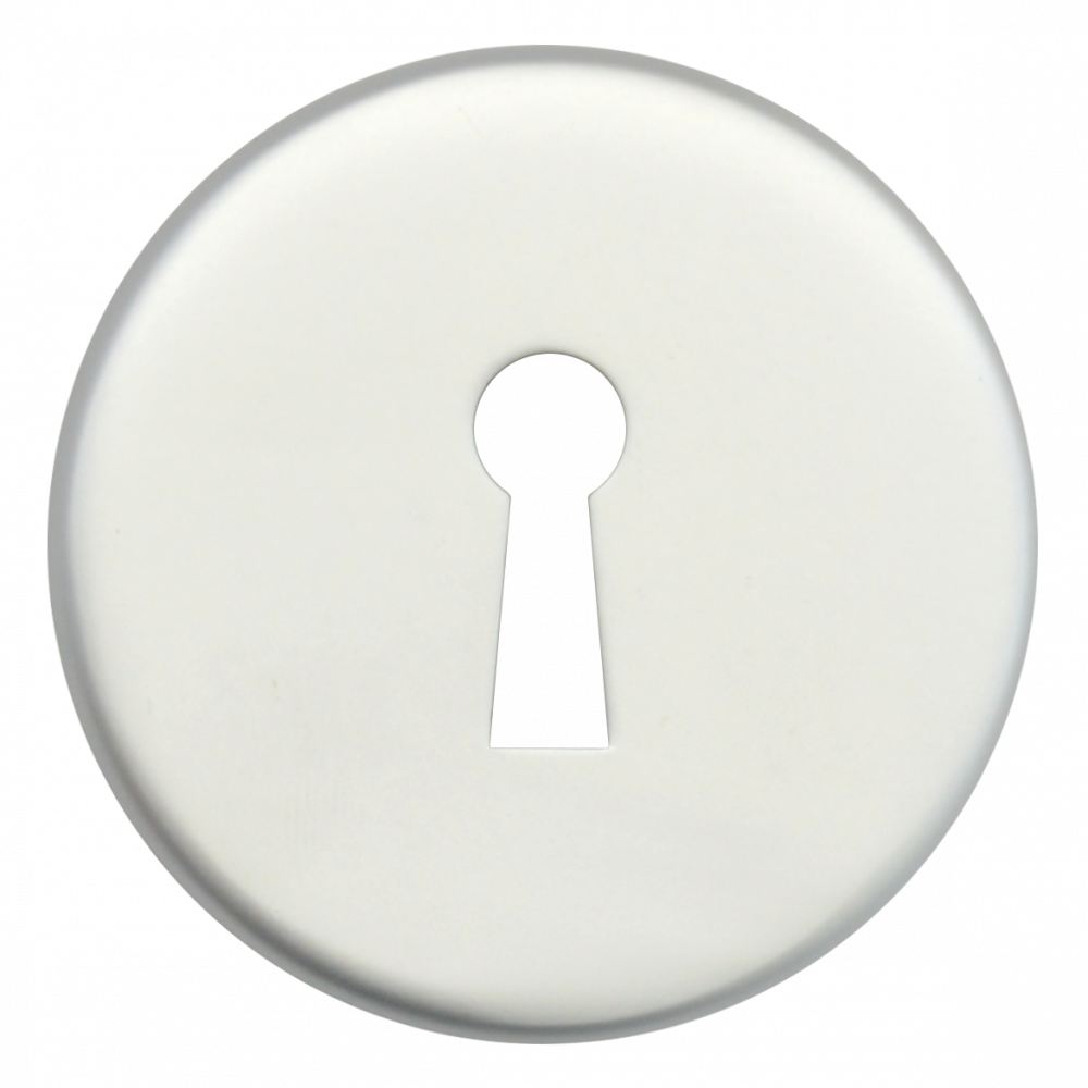 DORTREND 10ECKIAS Concealed Fixing PA Escutcheon 1 Locksmith in Stirling