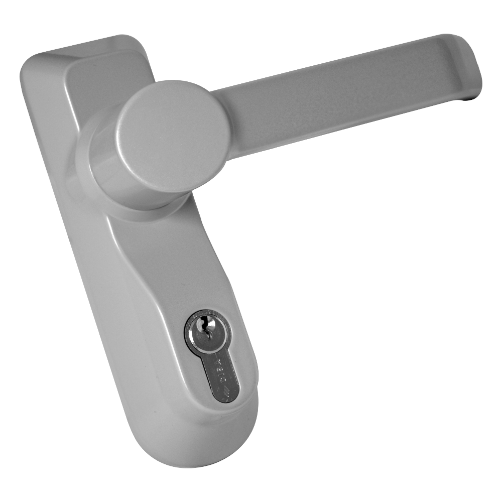 BRITON 1413ELE Lever Operated Outside Access Device 1 Locksmith in Stirling