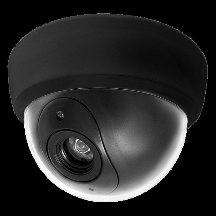 ASEC Dummy Dome Camera Internal 1 Locksmith in Stirling