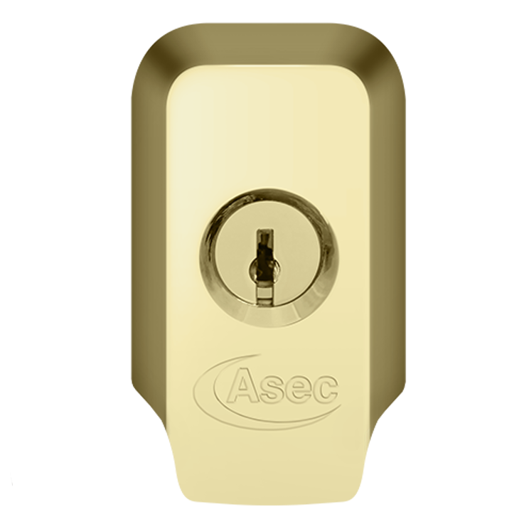 ASEC High Security Rim Cylinder Pull With Cylinder 1 Locksmith in Stirling